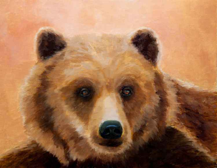 Brown Bear Portrait -