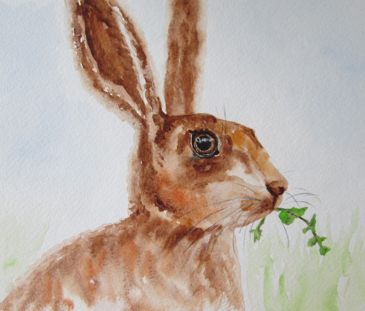"""""""ADORABLE HARE"""", rabbit, bunny, cute hare with lovely eye. Original watercolour - Image 0"""