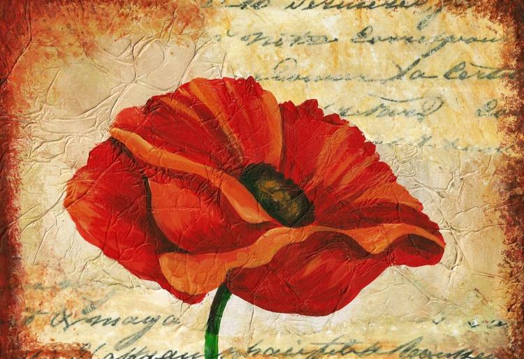 Antique Poppy - Image 0