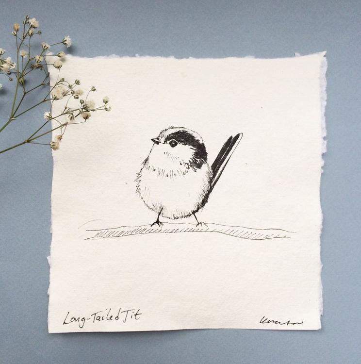 Long-tailed Tit - Image 0