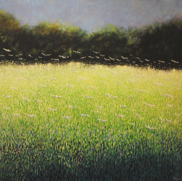 Field of Lights - Image 0