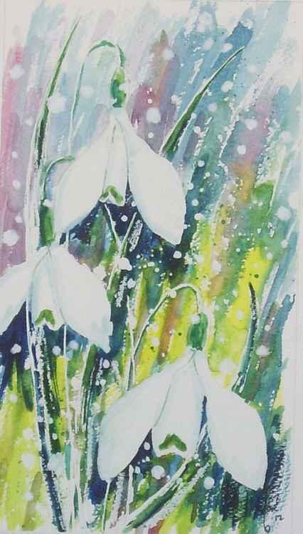 Snowdrops 2 -