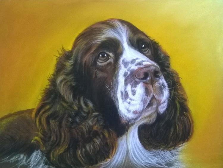 Personalised Pet Pastel Portrait - Image 0