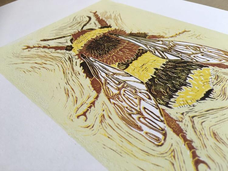 Bombus terrestris - Buff-tailed Bumblebee - Image 0