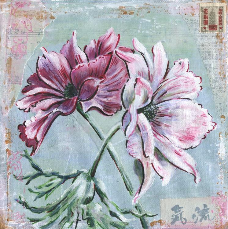Oriental anemones, pink shades . - Image 0