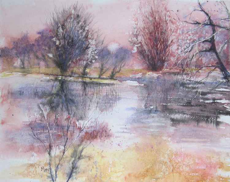 Flooded Fields with Bullfinch -