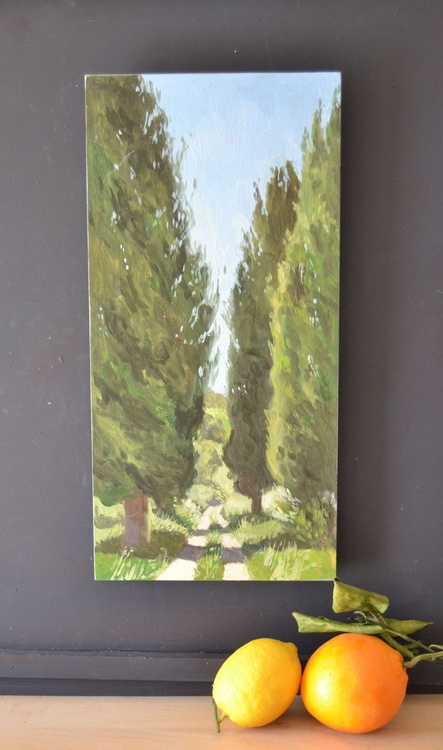 Cypress Trees around the Villa in Umbria, Italy - Image 0