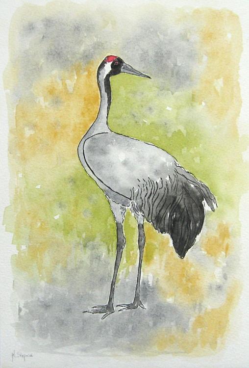 The common crane (Grus grus) - Image 0