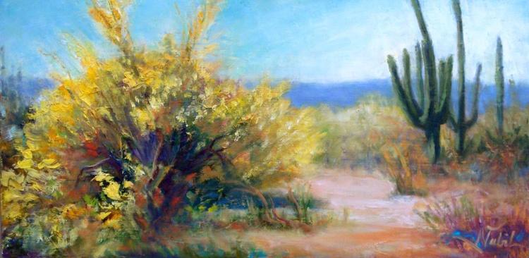 my desert backyard - Image 0