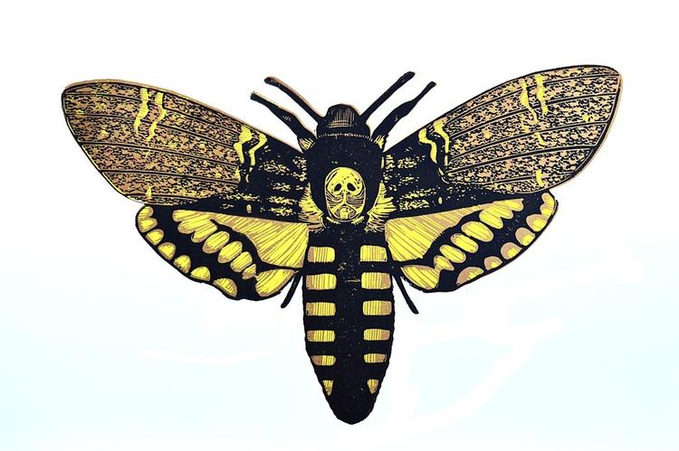 Death's Head Hawk Moth - Image 0