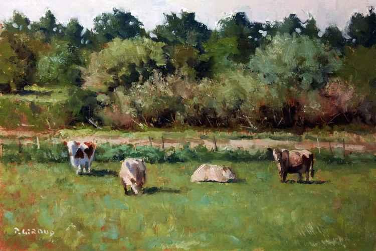 Four Cows -