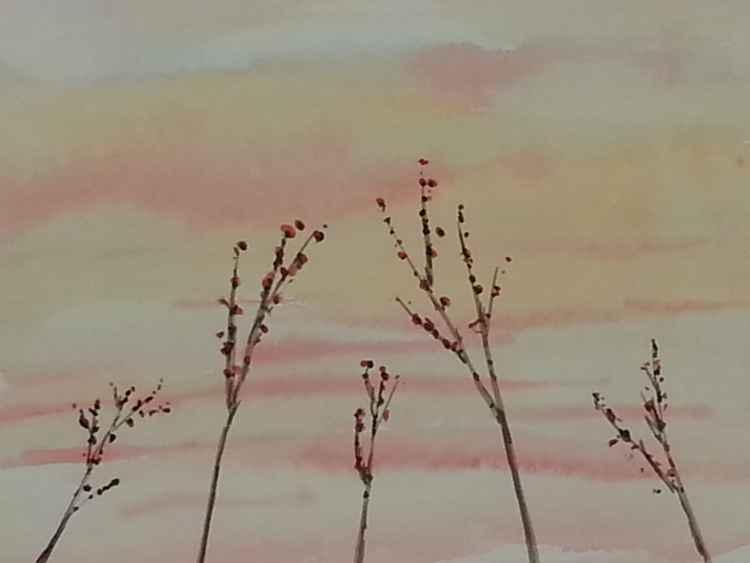spring blossom 1 -