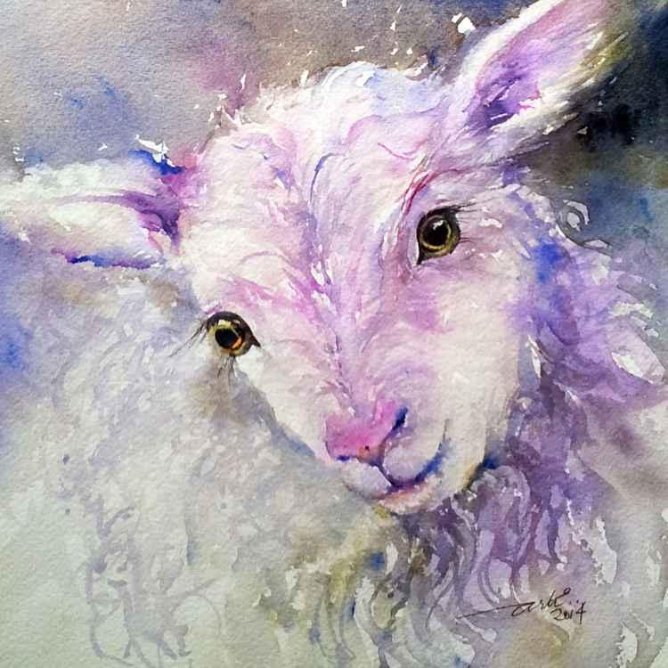 Iris the Lamb -
