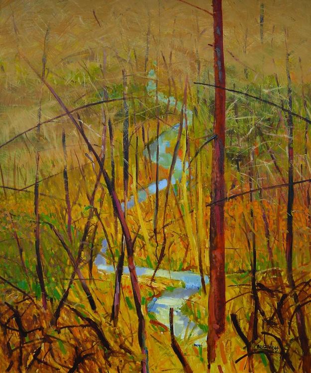 forest runlet - Image 0