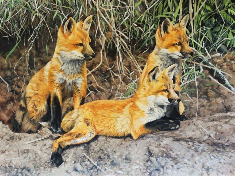 Patient Fox Cubs - Image 0