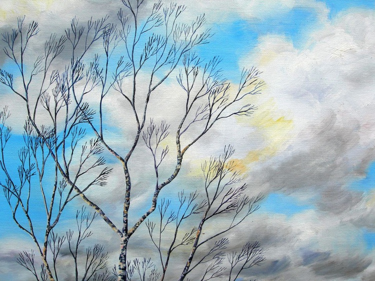 Silver Birch in Winter - Image 0