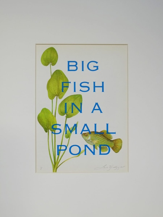 Big fish in a small pond - Image 0