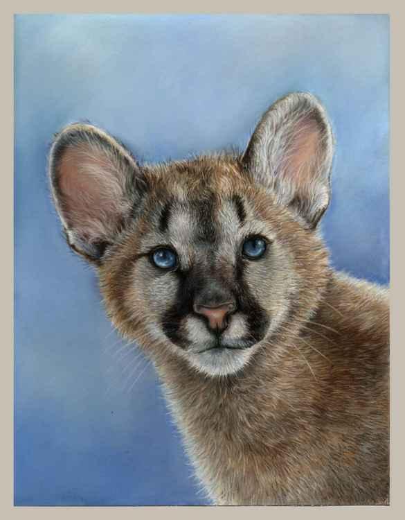 Puma cub pastel drawing