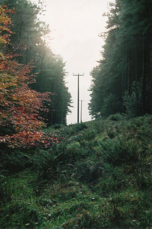 Corridor Of Power -  1/25 - Unmounted (18x12in) - Image 0