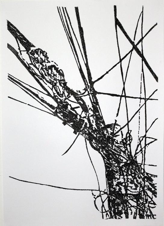 Entre lineas - Image 0