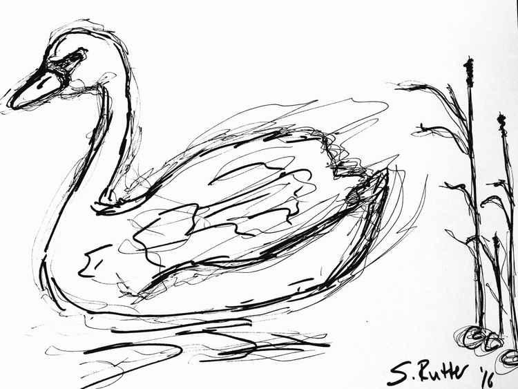 Elegant Bird -