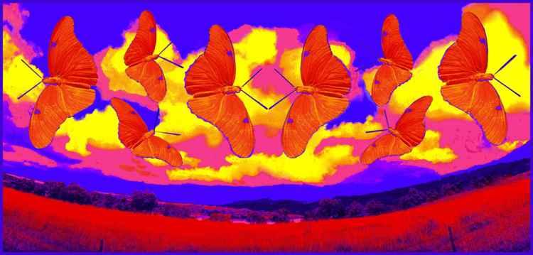 Butterfly Sky -