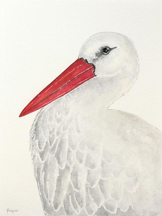 The white stork (Ciconia ciconia) - Image 0