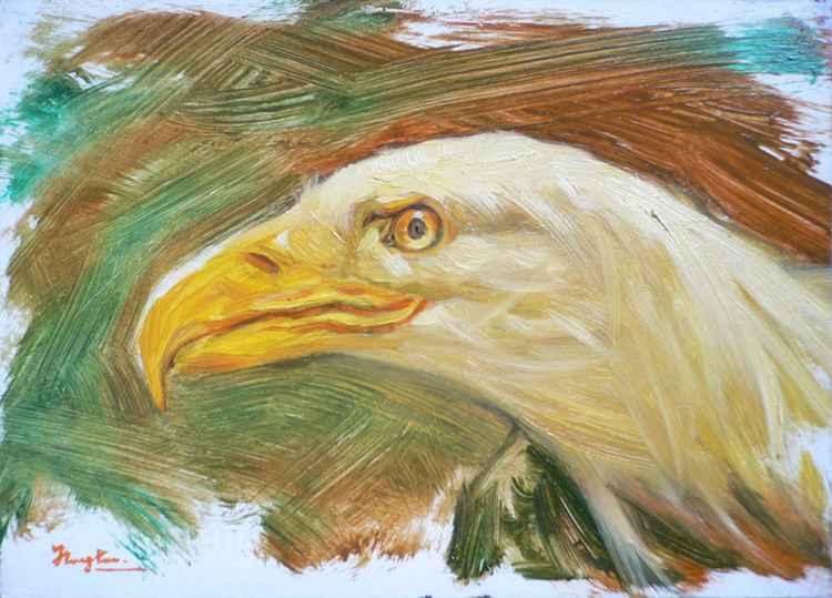 Original Oil paintingl animal  bird art EAGLE on board  #16-4-18 -
