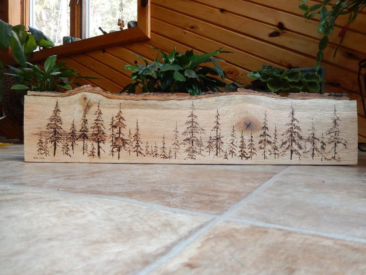 Line of Pines - Image 0