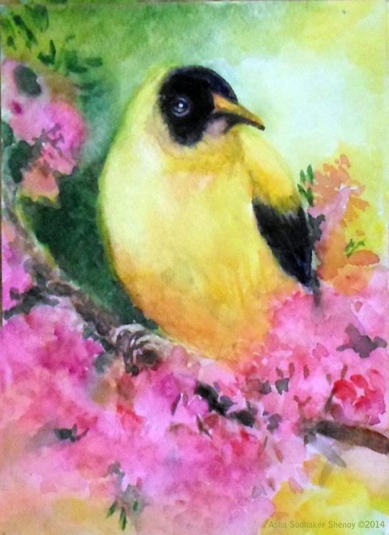 Goldfinch-bird - Image 0