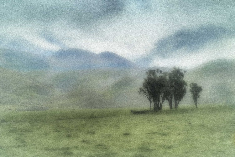 Lone Stand, New Zealand - Image 0