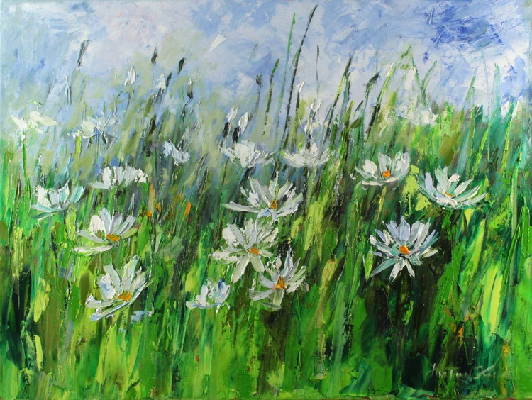 Camomiles on the summer meadow - Image 0