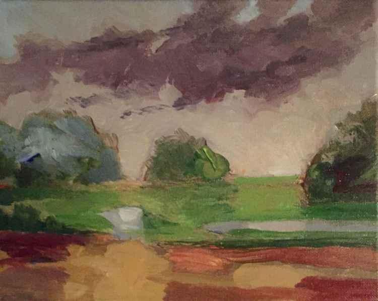 Wetland Series #3 -