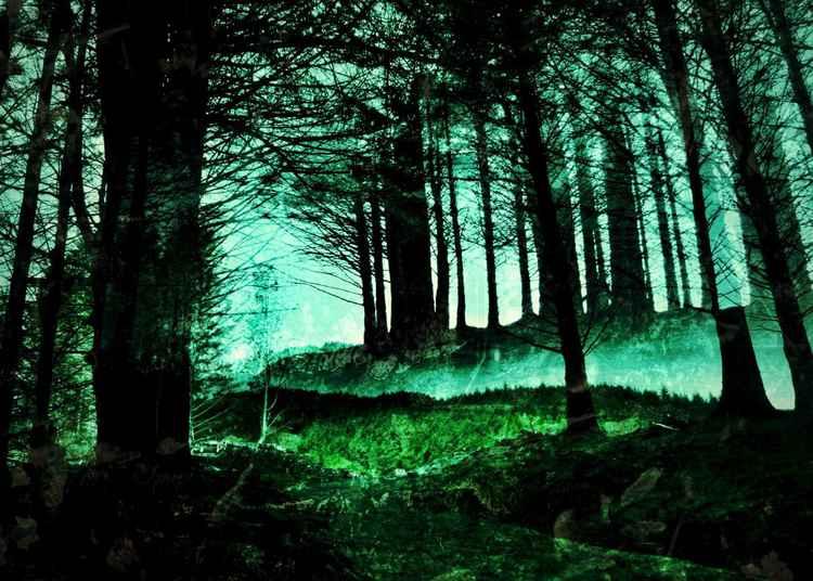 Awakened by My Walk - Isle of Skye - 11x14