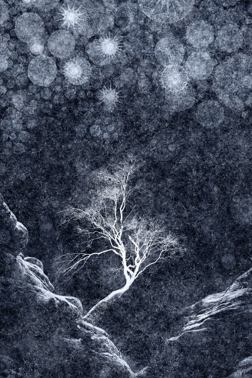 Midnight Ice Storm (Ltd Edition of only 20 Fine Art Giclee Prints from original artwork.) - Image 0