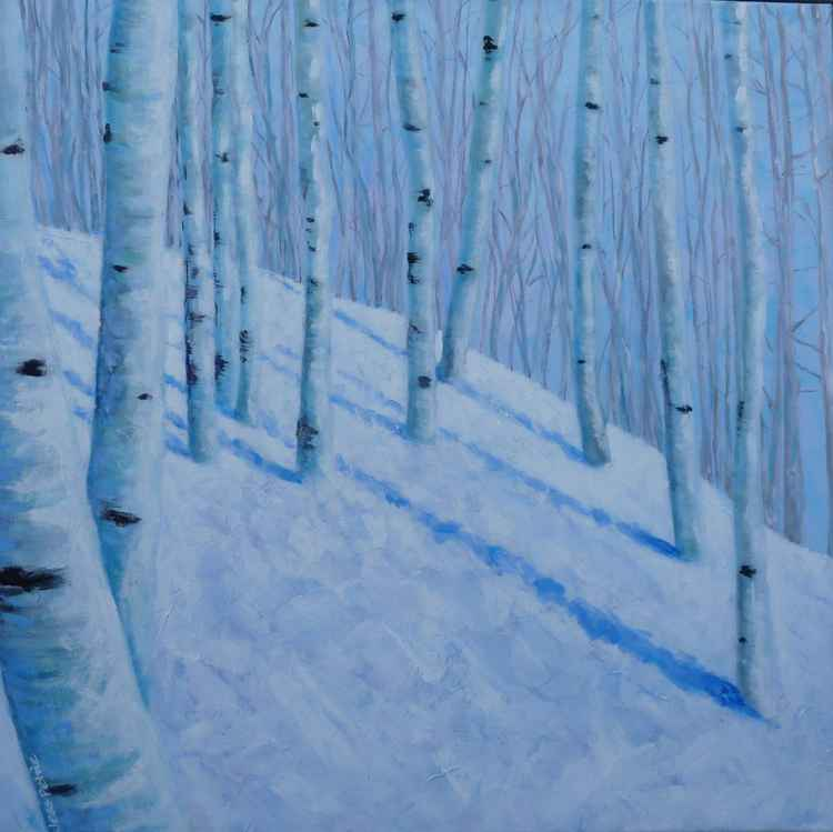 Winter Birches -