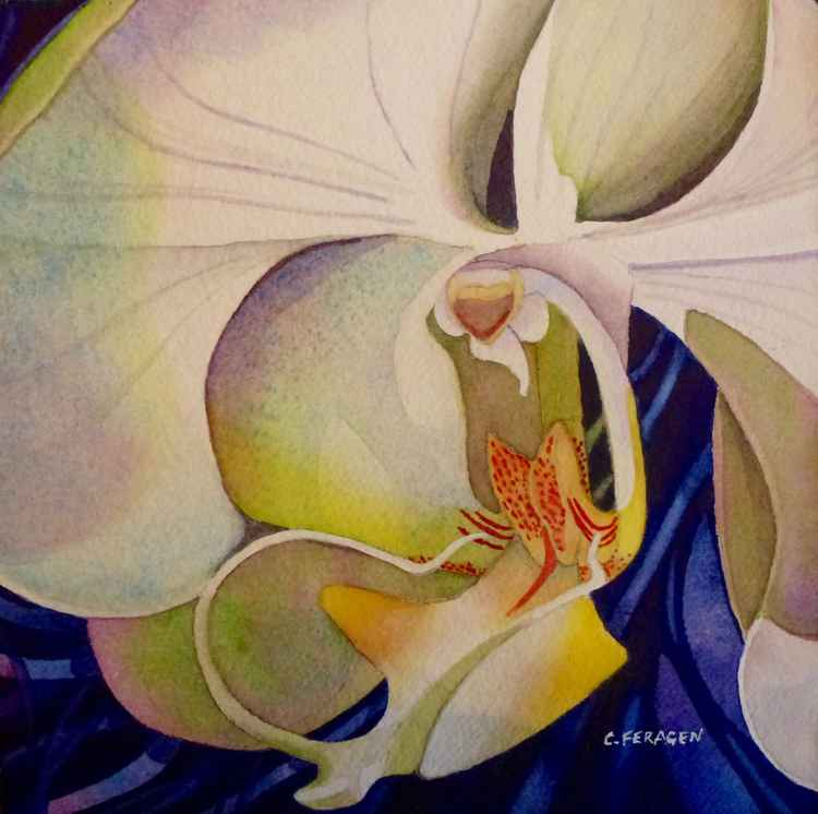 White Orchid  II -