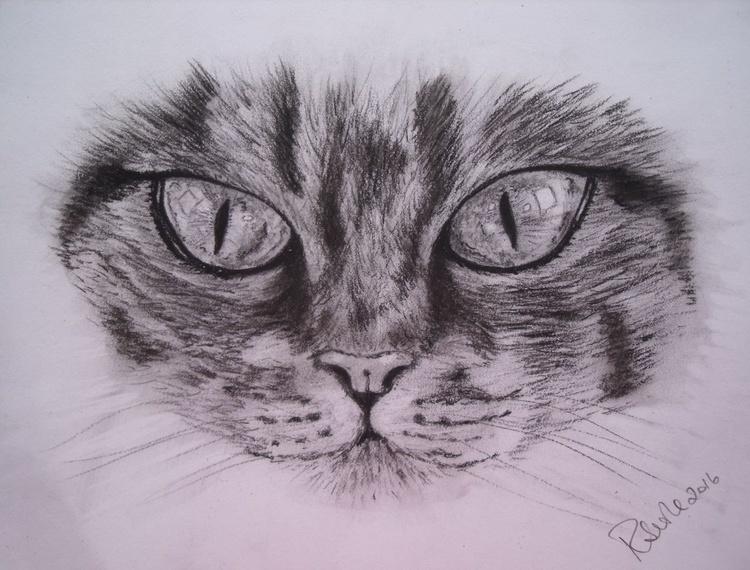 Cat's eyes - Image 0