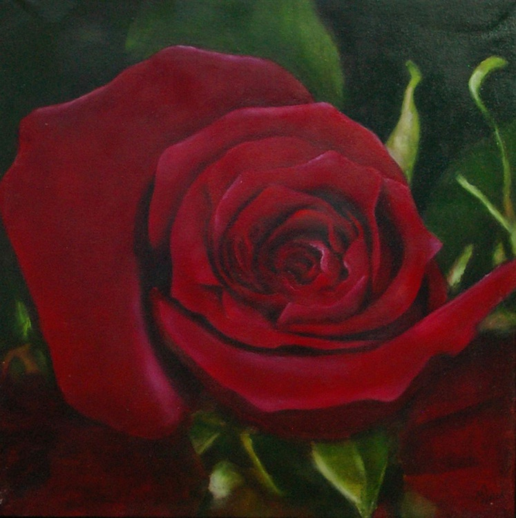 Red Rose - (Realistic Still Life One of a Kind Oil Painting on Canvas) - Image 0