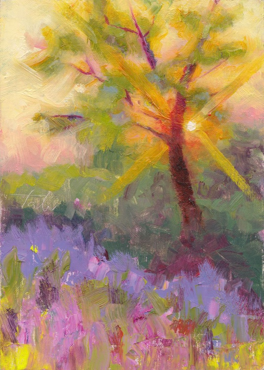 Sun Flares - plein air tree and lavender - Image 0