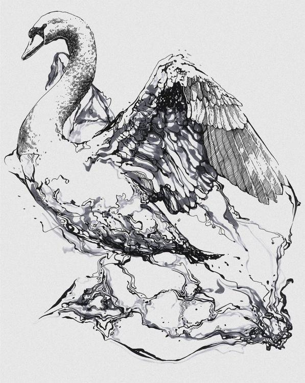 Swan v.01 - Image 0