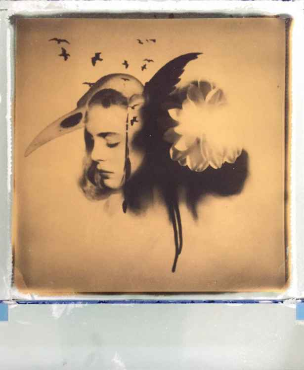Been & Gone -24ct Gold Leaf Polaroid Collage -