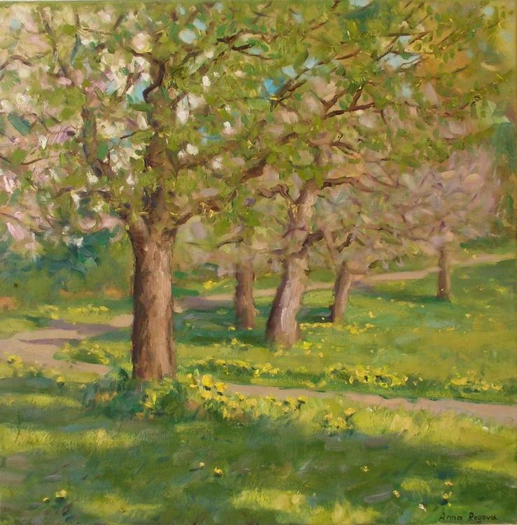 Spring 1 - Image 0