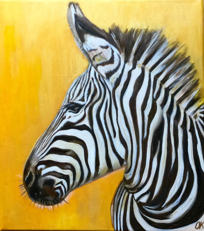 African zebra on the goldfields - Image 0