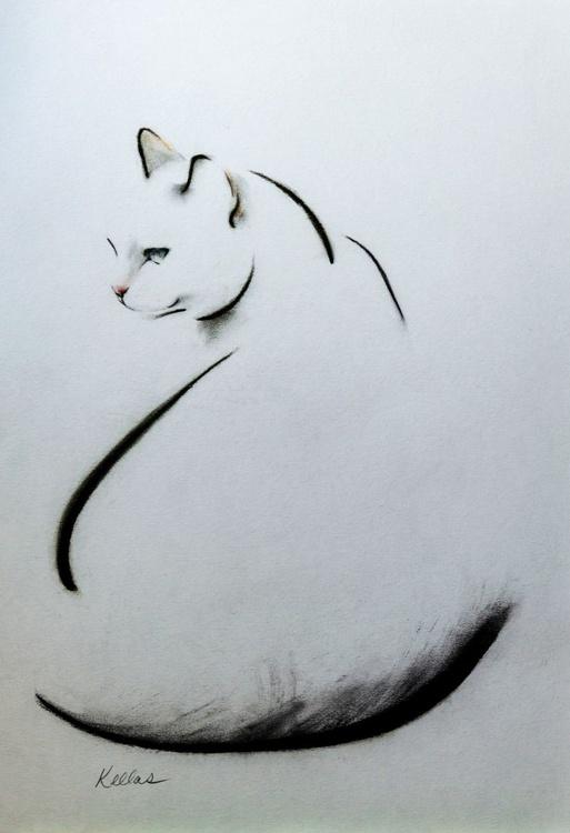 Swoop Cat - Image 0