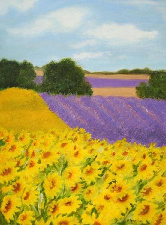 Fields - Image 0
