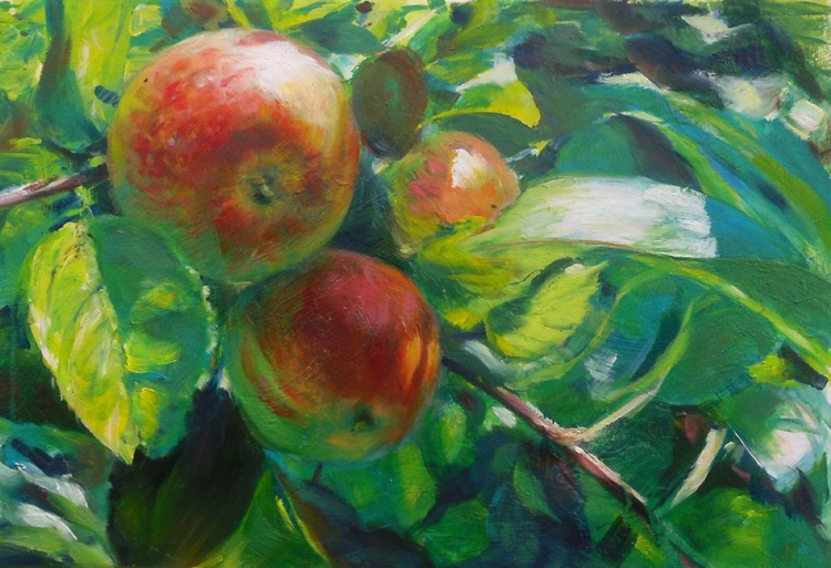 In the orchard - Image 0