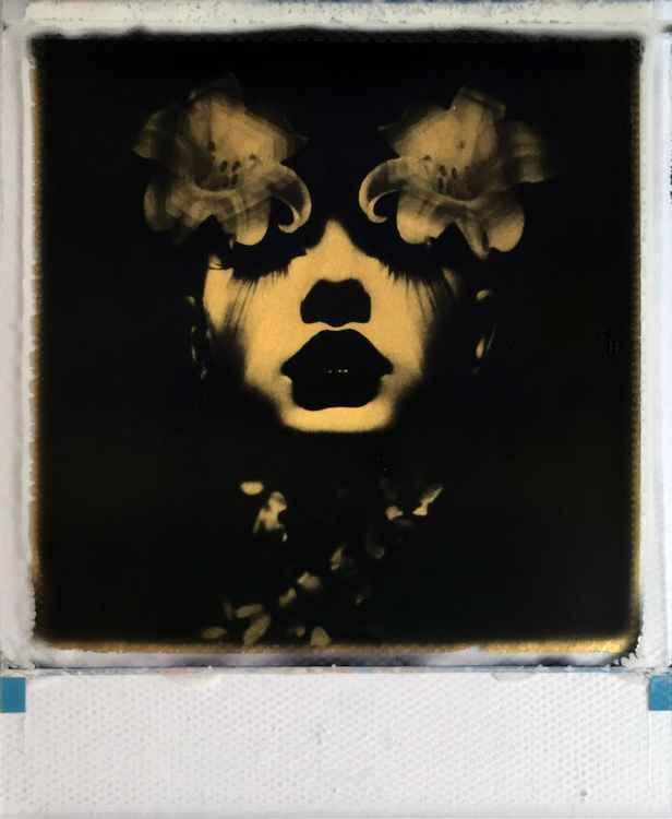 Stargazer 24ct gold leaf Polaroid collage -