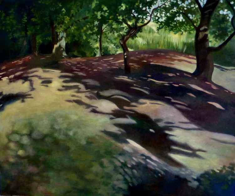 Epping Forest Shadows