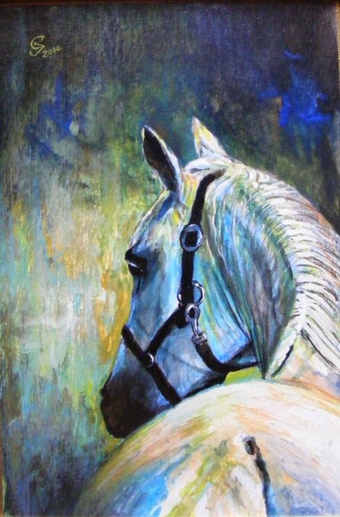 """""""Portrait of white stallion"""" - Image 0"""